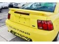 2002 Zinc Yellow Ford Mustang V6 Coupe  photo #12