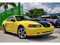 2002 Zinc Yellow Ford Mustang V6 Coupe  photo #28