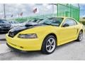 2002 Zinc Yellow Ford Mustang V6 Coupe  photo #48