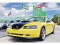 2002 Zinc Yellow Ford Mustang V6 Coupe  photo #50