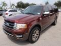 H7 - Bronze Fire Metallic Ford Expedition (2015-2016)