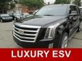 Black Raven 2015 Cadillac Escalade ESV Luxury 4WD