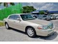 Light French Silk Metallic - Town Car Signature Limited Photo No. 4