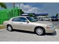 Light French Silk Metallic - Town Car Signature Limited Photo No. 5