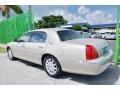 Light French Silk Metallic - Town Car Signature Limited Photo No. 56
