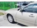 Light French Silk Metallic - Town Car Signature Limited Photo No. 61