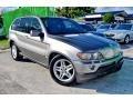 Sterling Grey Metallic 2004 BMW X5 4.4i