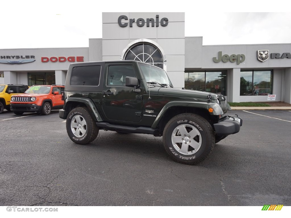 2010 Wrangler Sahara 4x4 - Natural Green Pearl / Dark Slate Gray/Medium Slate Gray photo #1