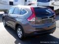 2014 Urban Titanium Metallic Honda CR-V LX  photo #3