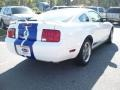 2006 Performance White Ford Mustang V6 Premium Coupe  photo #13