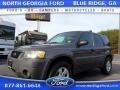 2005 Dark Shadow Grey Metallic Ford Escape XLT V6 4WD #110335635