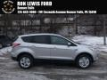 2016 Ingot Silver Metallic Ford Escape SE 4WD #110371046
