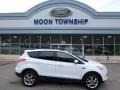 2014 White Platinum Ford Escape SE 2.0L EcoBoost 4WD  photo #1