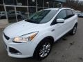 2014 White Platinum Ford Escape SE 2.0L EcoBoost 4WD  photo #9