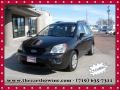 2009 Java Brown Kia Rondo LX #110642618
