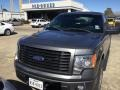 Sterling Grey 2014 Ford F150 STX Regular Cab