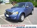 2009 Sport Blue Metallic Ford Escape XLT 4WD  photo #7