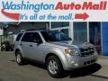 2011 Ingot Silver Metallic Ford Escape XLT 4WD #112347668