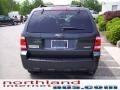 2009 Black Pearl Slate Metallic Ford Escape XLT V6 4WD  photo #3
