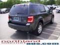 2009 Black Pearl Slate Metallic Ford Escape XLT V6 4WD  photo #4