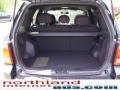 2009 Black Pearl Slate Metallic Ford Escape XLT V6 4WD  photo #15