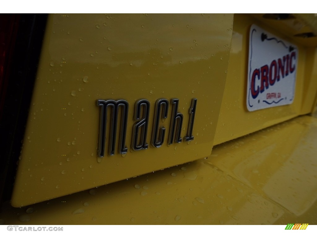 2003 Mustang Mach 1 Coupe - Zinc Yellow / Dark Charcoal photo #13