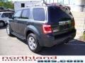 2009 Black Pearl Slate Metallic Ford Escape Limited V6 4WD  photo #2