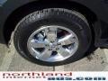 2009 Black Pearl Slate Metallic Ford Escape Limited V6 4WD  photo #8