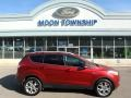 2014 Sunset Ford Escape Titanium 1.6L EcoBoost 4WD  photo #1