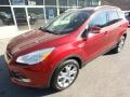 2014 Sunset Ford Escape Titanium 1.6L EcoBoost 4WD  photo #9