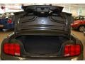 2007 Alloy Metallic Ford Mustang GT Premium Coupe  photo #14