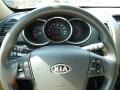 2011 Spicy Red Kia Sorento LX  photo #17
