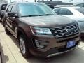 2016 Caribou Metallic Ford Explorer XLT  photo #18
