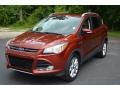 Sunset Metallic 2015 Ford Escape Gallery