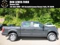 Lithium Gray 2016 Ford F150 Gallery