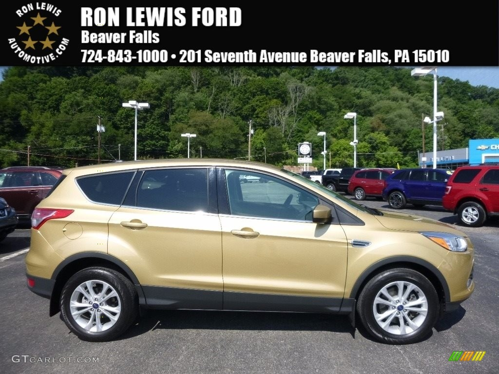 2014 Escape SE 1.6L EcoBoost 4WD - Karat Gold / Charcoal Black photo #1