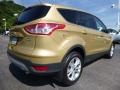 2014 Karat Gold Ford Escape SE 1.6L EcoBoost 4WD  photo #3