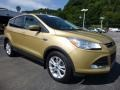 2014 Karat Gold Ford Escape SE 1.6L EcoBoost 4WD  photo #10