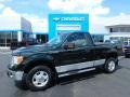 Green Gem Metallic 2013 Ford F150 XLT Regular Cab 4x4