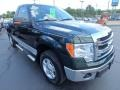 Green Gem Metallic - F150 XLT Regular Cab 4x4 Photo No. 15