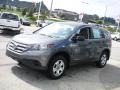 2014 Polished Metal Metallic Honda CR-V LX AWD  photo #4