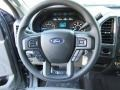 Earth Gray Steering Wheel Photo for 2017 Ford F150 #117656406