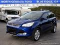 2013 Deep Impact Blue Metallic Ford Escape SEL 2.0L EcoBoost #117679971