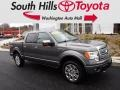 Sterling Gray Metallic 2012 Ford F150 Platinum SuperCrew 4x4