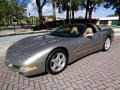 Light Pewter Metallic 1999 Chevrolet Corvette Coupe