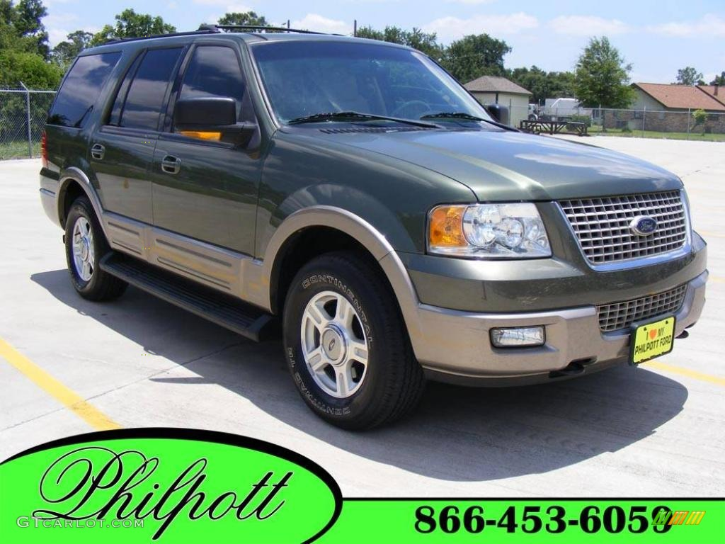 2003 ford expedition eddie bauer 4x4 estate green metallic color. Cars Review. Best American Auto & Cars Review