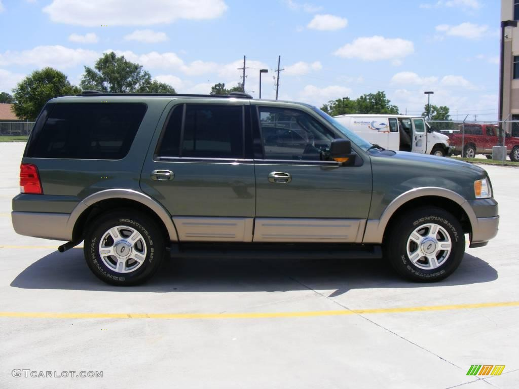 2003 estate green metallic ford expedition eddie bauer 4x4. Black Bedroom Furniture Sets. Home Design Ideas