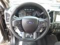 Earth Gray Steering Wheel Photo for 2017 Ford F150 #118772710