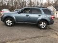 2010 Sport Blue Metallic Ford Escape XLT V6 4WD  photo #3