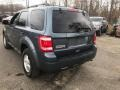 2010 Sport Blue Metallic Ford Escape XLT V6 4WD  photo #5